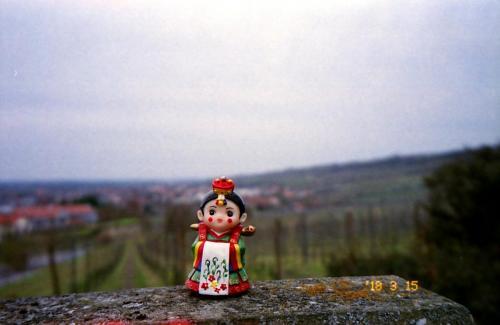 Braut auf Tour 7- Eppenheim am Rhein