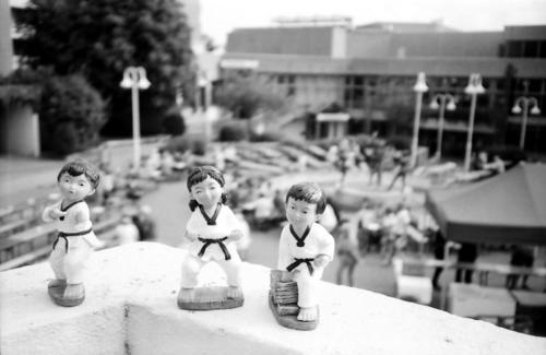 Taekwondo auf Tour 9Schwalbach